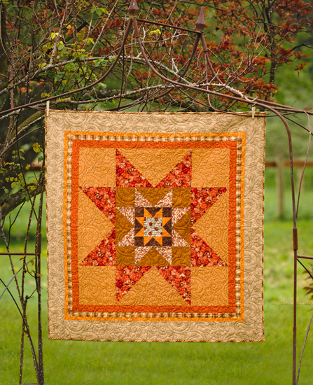 Medallion quilt from Fast and Fun First Quilts