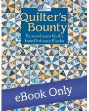 Quilter's Bounty - Extraordinary Quilts from Ordinary Blocks
