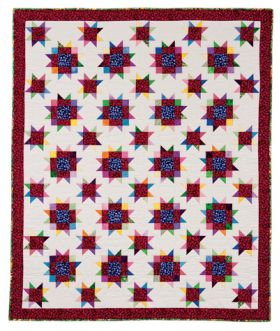 Martingale - The Raspberry Thief Quilt ePattern