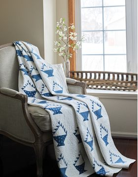 Martingale - Blue & White Quilts (Print version + eBook bundle)
