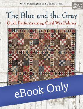 Martingale - The Blue and the Gray eBook