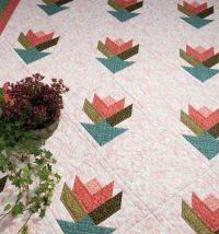 Martingale - More Take 5 Quilts eBook